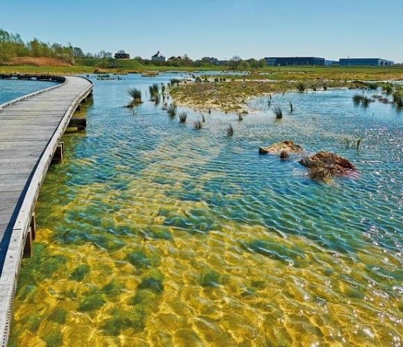 Zone Naturelle Interet Ecologique Faunaistique et Floristiuqe de l'Ecôpole