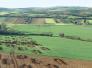 La ferme gallo-romaine de Moissy-Cramayel